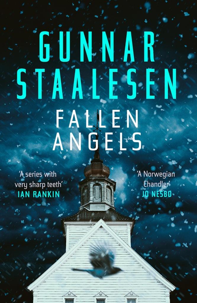 cover of Fallen Angels